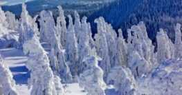 Bad Füssing im Bayerischen Wald – Eine Sinfonie an die Gesundheit