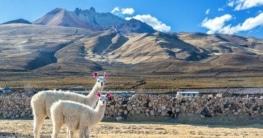 Klima Bolivien