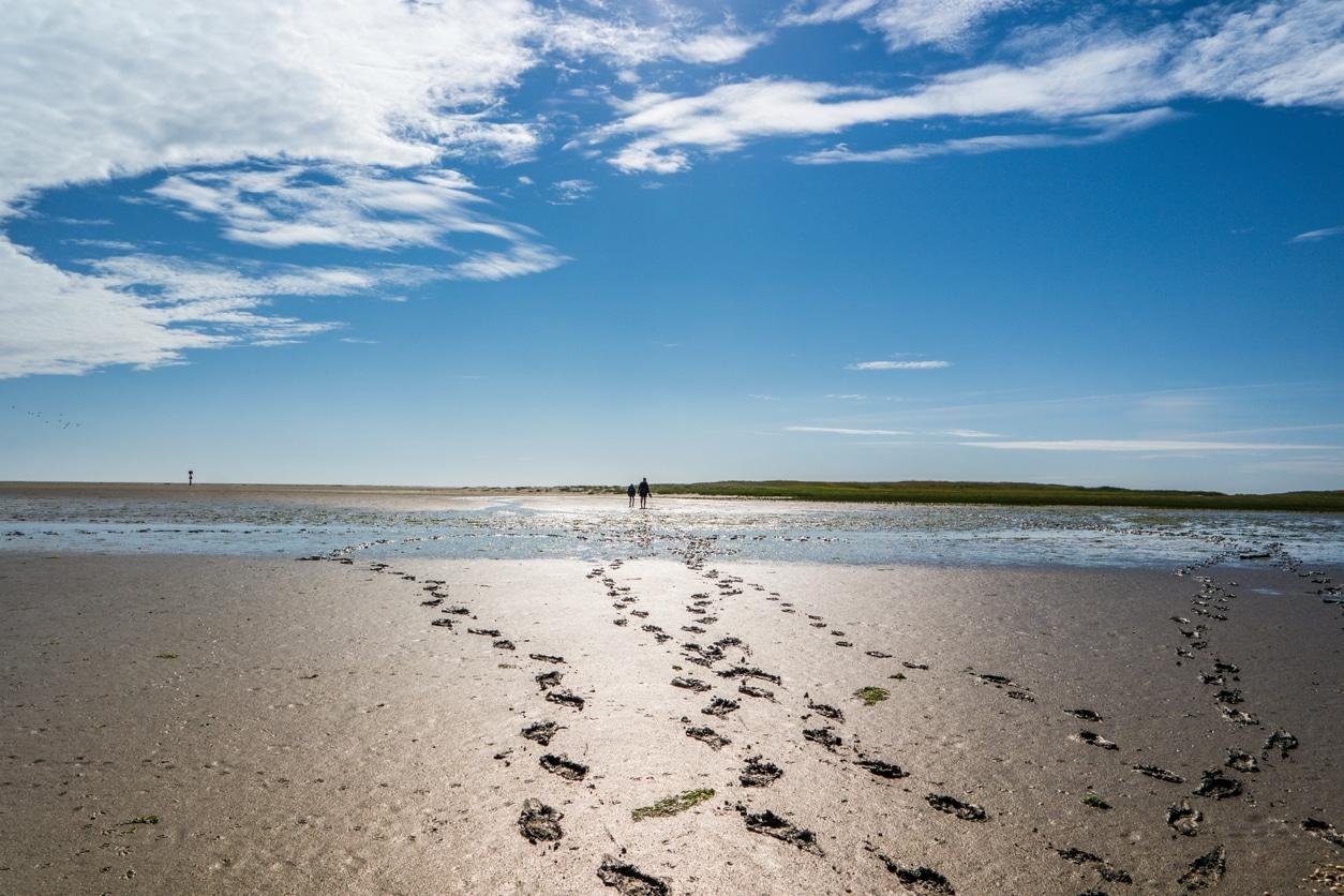 Wattenmeer auf Sylt